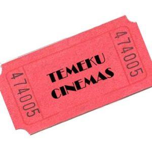Temeku Cinemas hosts 10th Anniversary Party