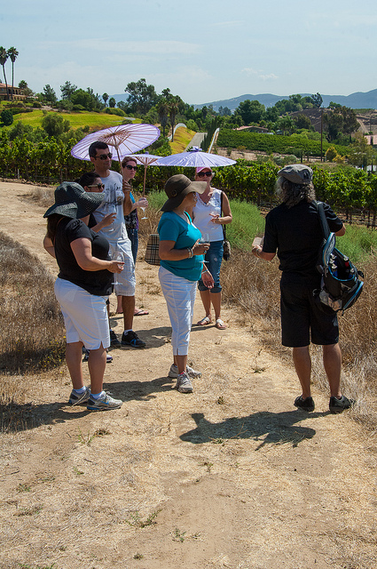 Wine tour and education class at Europa Village Winery, (c) Crispin Courtenay