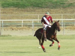 Polo at TVPC