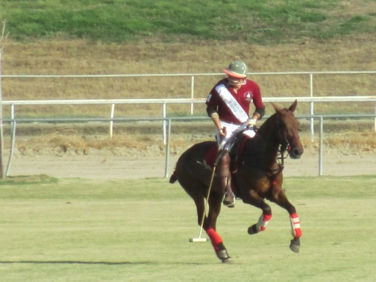 Temecula Valley Polo Club team at TVPC (c) Shawna Sarnowski