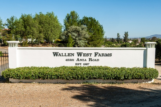 Wallen West Farms Entrance, Temecula