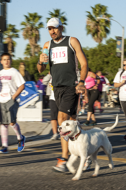 People and Pets run for cure Susan G. Komen Race for the cure in Temecula (c) Crispin Courtenay