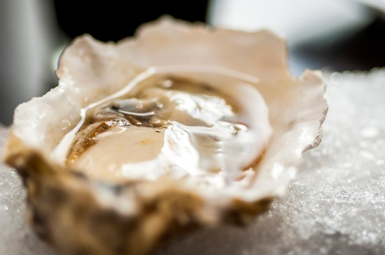 Crush and Brew Old Town Temecula Restaurant Oysters up close (c) Crispin Courtenay