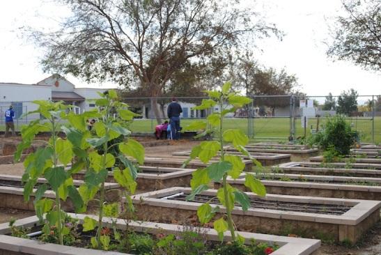 KinderGarden Raised beds (c) Corie Maue