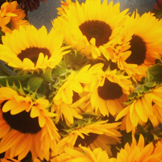 Sunflowers at Temecula's Wednesday Promenade Temecula Farmer's Market