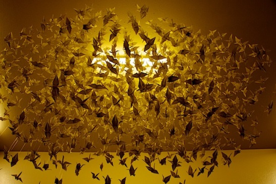 One thousand origami swans, hand folded by students at Oak Grove Center (c) Peter Zaayer