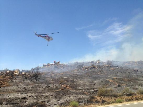 About 7 acres rapidly burned from Los Alamos to Clinton Kieth in Murrieta (c) Maggie Avants