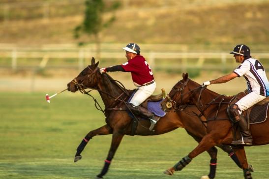 Temecula Valley Polo Club vs. BMW Polo Team at opening day (c) Shawna Sarnowski